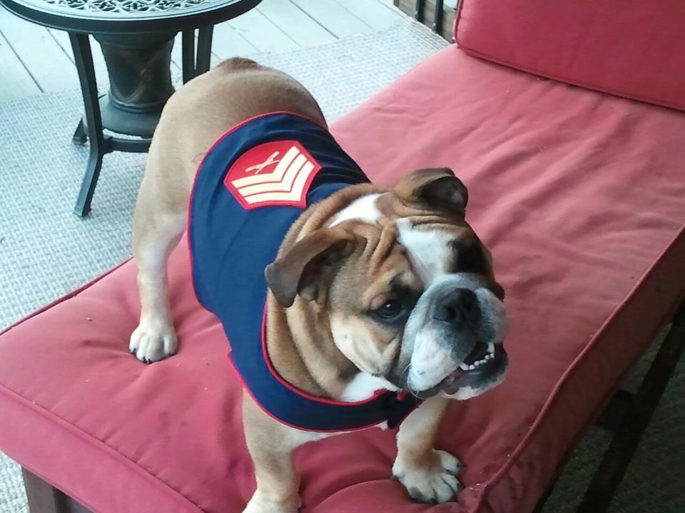 Sgt Grunt